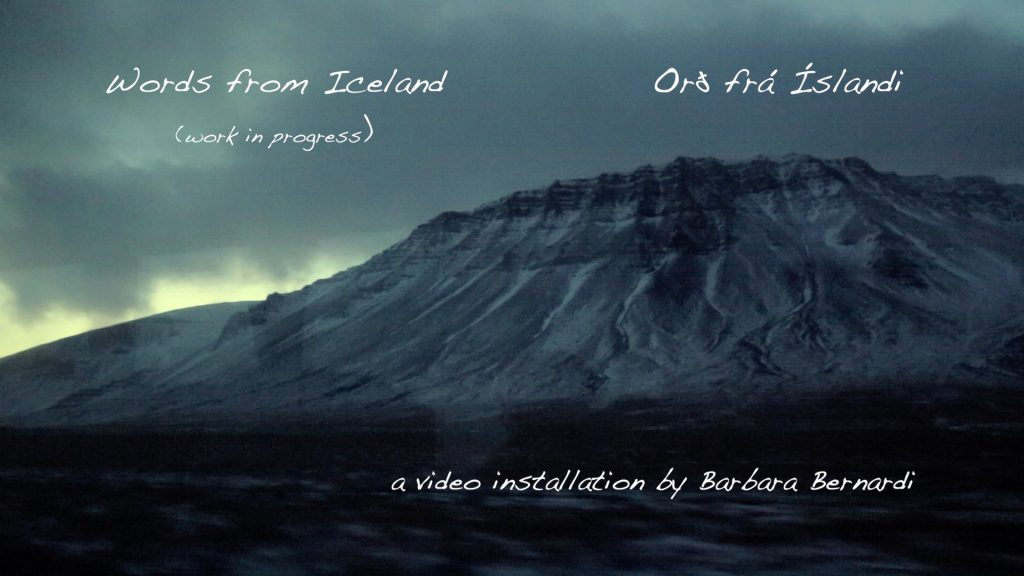 icelandic-translation